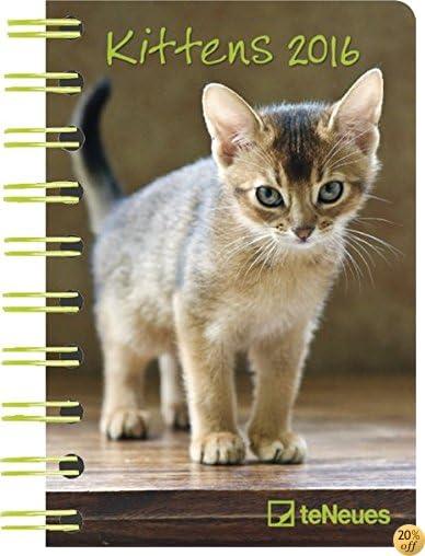 T2016 Kittens Deluxe Pocket Engagement Calendar