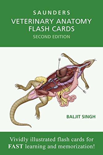veterinary-anatomy-flash-cards-e-book