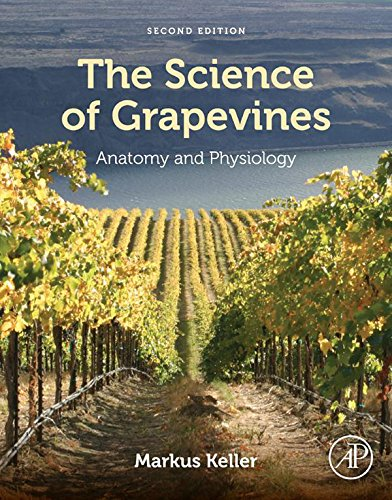 the-science-of-grapevines-anatomy-and-physiology