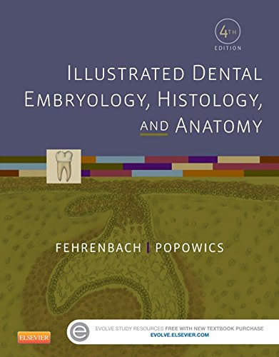 illustrated-dental-embryology-histology-and-anatomy-e-book