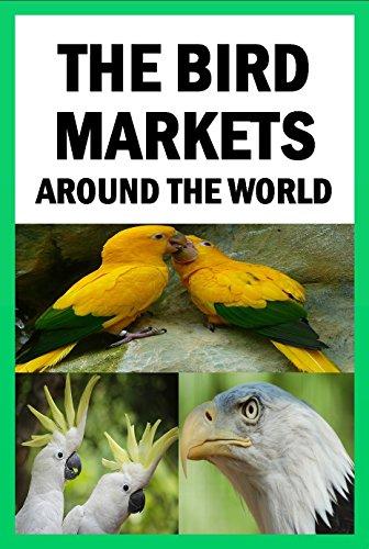 the-bird-markets-around-the-world