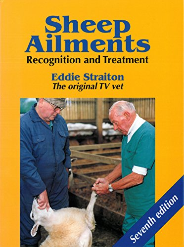 sheep-ailments-recognition-and-treatment