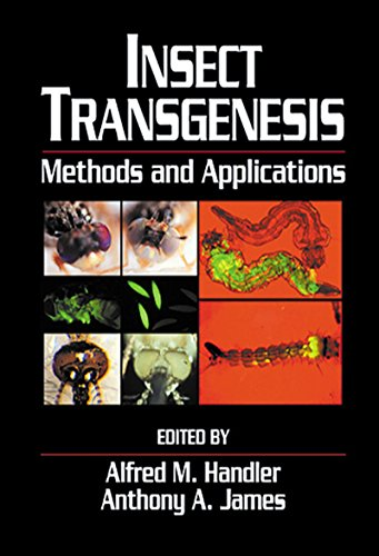 insect-transgenesis-methods-and-applications
