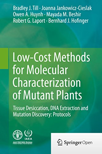 low-cost-methods-for-molecular-characterization-of-mutant-plants-tissue-desiccation-dna-extraction-and-mutation-discovery-protocols