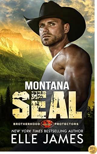 TMontana SEAL (Brotherhood Protector Series Book 1)