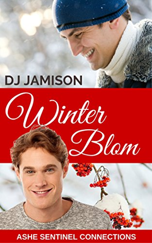 winter-blom-holiday-novella-ashe-sentinel-connections-book-4