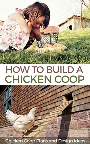 how-to-build-a-chicken-coop-chicken-coop-plans-and-design-ideas