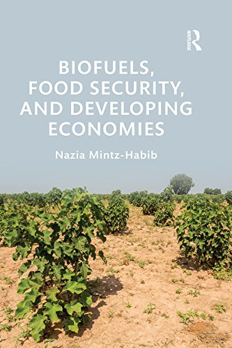 biofuels-food-security-and-developing-economies-routledge-studies-in-bioenergy