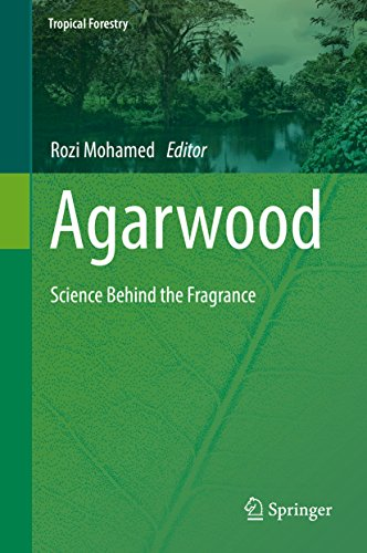agarwood-science-behind-the-fragrance-tropical-forestry