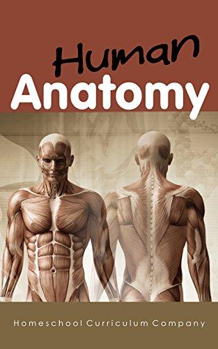 anatomy-homeschool-curriculum-human-anatomy-for-kids