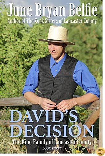 TDavid's Decision (The King Family of Lancaster County Book 3)