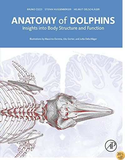 Anatomy of Dolphins: Insights into Body Structure and Function