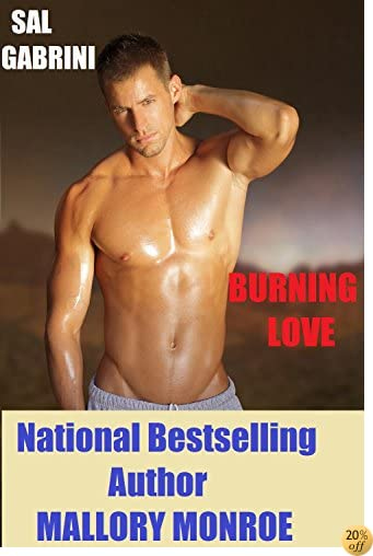 TSal Gabrini: Burning Love (Sal Gabrini Series Book 8)