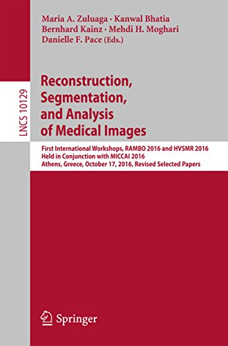 reconstruction-segmentation-and-analysis-of-medical-images-first-international-workshops-rambo-2016-and-hvsmr-2016-held-in-conjunction-with-miccai-papers-lecture-notes-in-computer-science