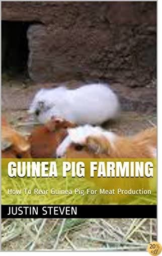 GUINEA PIG FARMING: How To Rear Guinea Pig For Meat Production