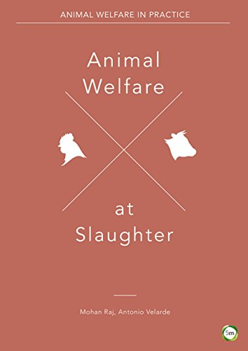 animal-welfare-at-slaughter