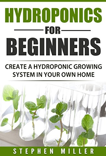 hydroponics-for-beginners-create-a-hydroponic-system-in-your-own-home