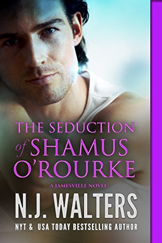 the-seduction-of-shamus-orourke-jamesville-series