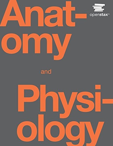 anatomy-and-physiology