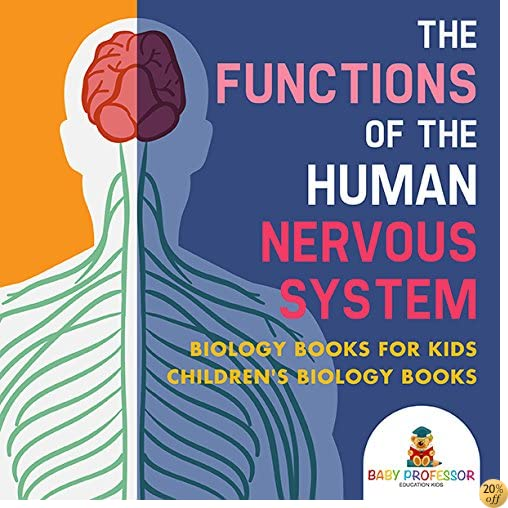 The Functions of the Human Nervous System - Biology Books for Kids  Children's Biology Books