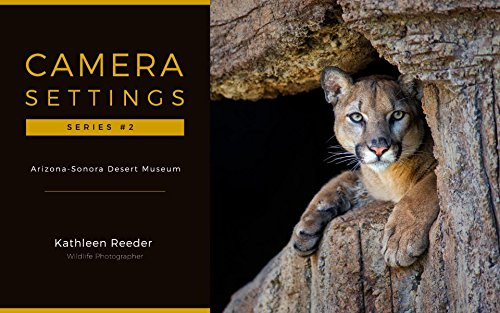 camera-settings-arizona-sonora-desert-museum