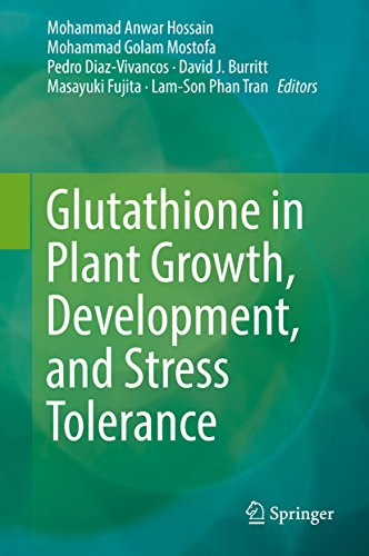 glutathione-in-plant-growth-development-and-stress-tolerance