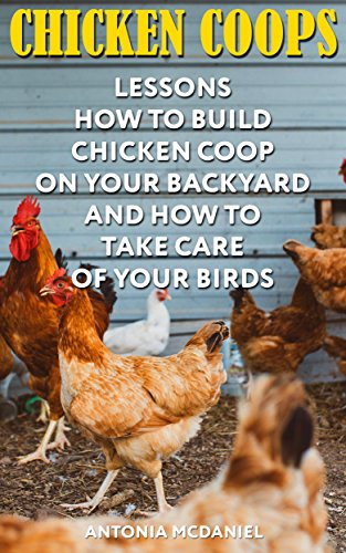 chicken-coops-lessons-how-to-build-chicken-coop-on-your-backyard-and-how-to-take-care-of-your-birds