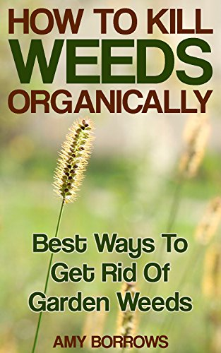 how-to-kill-weeds-organically-best-ways-to-get-rid-of-garden-weeds-gardening-for-beginners-organic-gardening