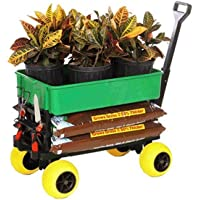 Mighty Max Plus One Special PO600C-GRN-Y Flatbed, Cooler Caddy, and Garden Cart
