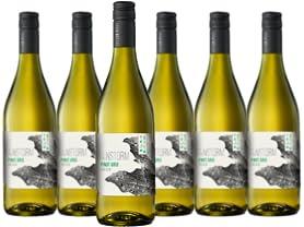 6-Pack Rainstorm Oregon Pinot Gris