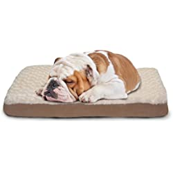 PawMate Orthopedic & Gel Foam Beds - Multiple Colors