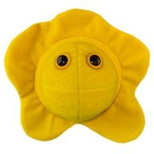 Herpes Stuffed Toy