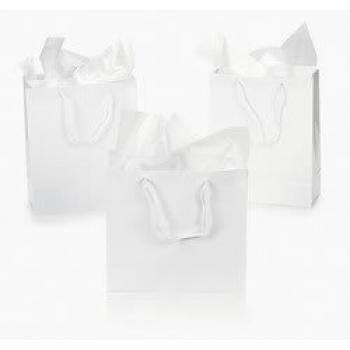 Dozen Gift Bags - White