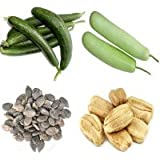 Alkarty Ridge Gourd And Bottle Gourd Seed 20 Nos.