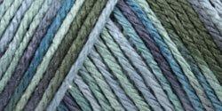 Bulk Buy: Caron Simply Soft Yarn Paints (3-Pack) Spring Brook C9700P-4