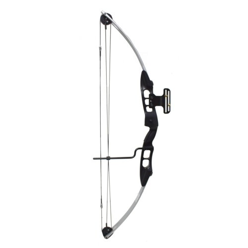 55 Lb 27-29'' Draw Length Compound Bow with Cable Guard, Sight and Arrow Rest (Silver/Black)