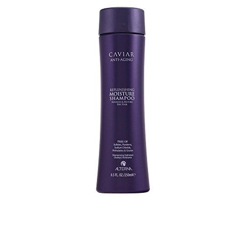 Alterna Caviar Anti-Aging Replenishing Moisture Shampoo 8.5