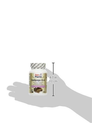 Zein Pharma Cordyceps Kapseln 500 mg, 120 Kapseln, 1er Pack (1 x...