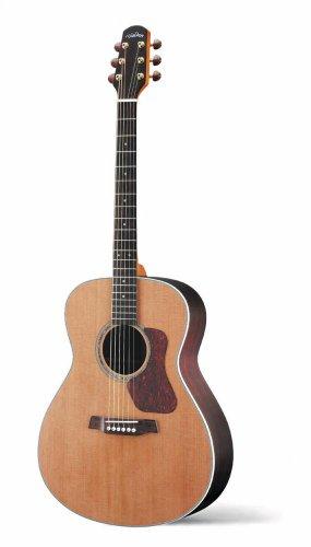 Walden' G730 Acoustic Guitar,w/gig Bag | Best Guitar ...
