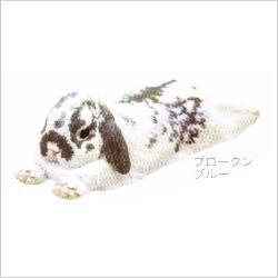 ネイチャーテクニカラーMONO ウサギ ストラップ×マグネット【10.ホーランドロップ:ブロークンブルー(マグネット)】(単品)