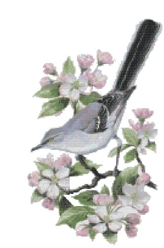 Arkansas State Bird Northern Mockingbird And Flower Apple Blossom Counted Cross Stitch Pattern