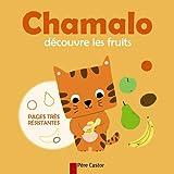 Chamalo découvre les fruits par Marion Billet