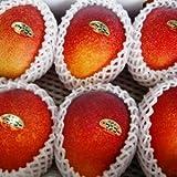 【期間限定】 完熟アップルマンゴー贈答用【優】2kg前後(3?6個)7月?8月上旬発送