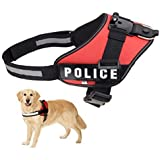Fetch Dog Harness DUALANE Camera Chest Support Shoulder Strap Adjustable Belt Mount Holder Kit For Gopro Hero...