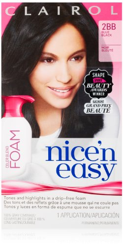 Clairol Nice 'N Easy Color Blend Foam Hair Color 2bb Blue Black 1 Kit