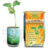 The Incredible Nature's Greeting Bean Plant That Sprouts With The Message Of Friends Forever Engraved On The Beautiful...