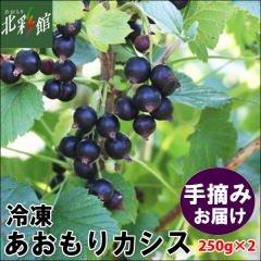 青森県産カシス【送料込】