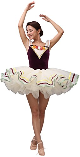 Women's 6 layers tulle Ballet Dance