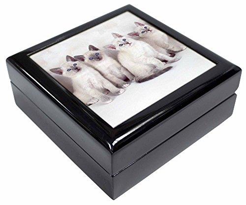 Schneeschuh Kätzchen Snow Show Katzen Andenken/Schmuck Box Weihnachten Geschenk