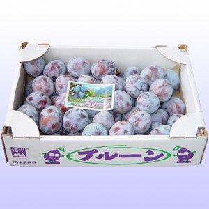 JA全農長野 信州のプルーン バラ詰め 約3kg